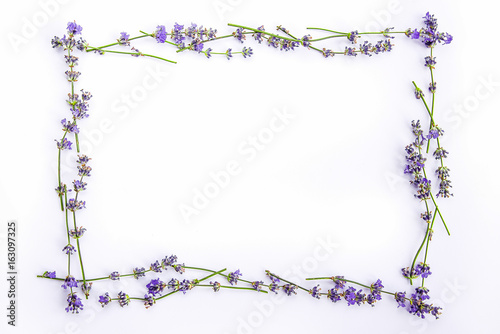 Fotobehang Lavendel A frame of fresh lavender flowers on a white background. Lavender flowers mock up. Copy space.
