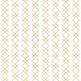 Stylowy liniowy geometryczny bezszwowy wektoru wzór. - 163111926