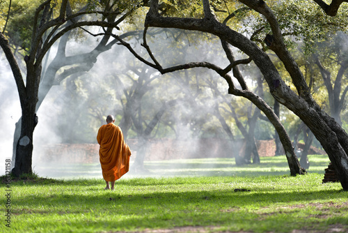 Stampa su Tela The monk walks in the park, the monk meditates under the Buddha's tree at Wat Ayutthaya, the Buddhist monk temple in Thailand