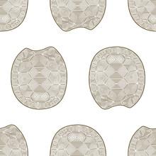 Carapace Turtle Zen Tangle Seamless Pattern. Coloring Book Wildlife Animal. Wallpaper Shell Tortoise.