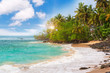 Beautiful tropical beach with palmtrees.