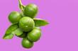 Leinwanddruck Bild - green lemon isolated
