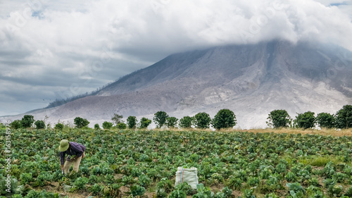 Staande foto Vulkaan SINABUNG VOLCANO, SUMATRA, INDONESIA - September 28, 2016: Unidentified woman farmer ignores the volcano eruption and continues her work. Eruption of Sinabung killed several people in recent years