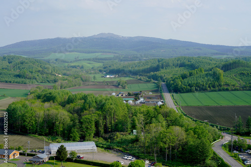 Spoed Fotobehang Rijstvelden Road in Hokkaido with the mountain on the background