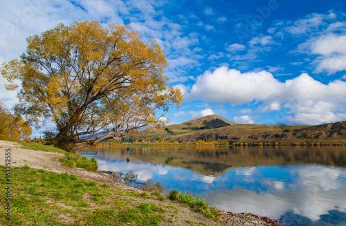 Aluminium Prints Autumn Autumn leaves at reflection Lake Hayes, South Island, New Zealand