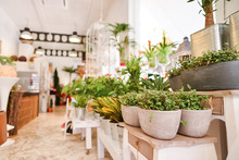 An Image Of A Flower Shop With...