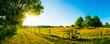 canvas print picture - Landschaft im Sommer mit Bäumen und Wiesen bei strahlendem Sonnenschein