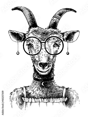 hand-drawn-goat-hipster
