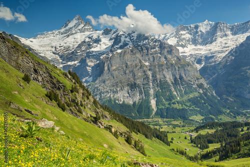 Fotobehang Alpen Vallée de Grindelwald