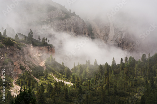 Poster Morning with fog Clouds over forest and moutain cliffs, Dolomiti, Italy