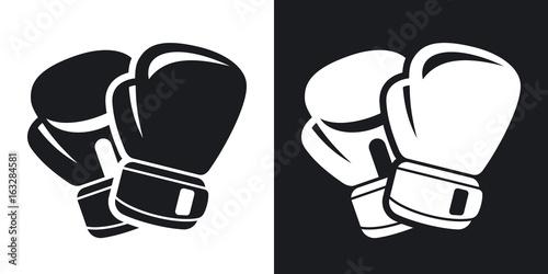 Fényképezés  Vector boxing gloves icon