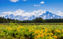 Mountain Range In Spring In Grand Tetons National Park
