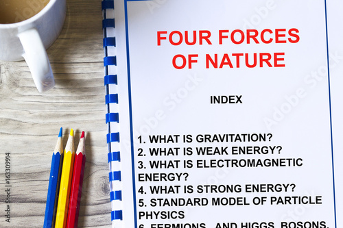 Four forces of nature lecture Canvas Print