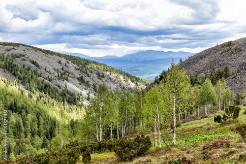 Photo Summer beautiful mountain landscape
