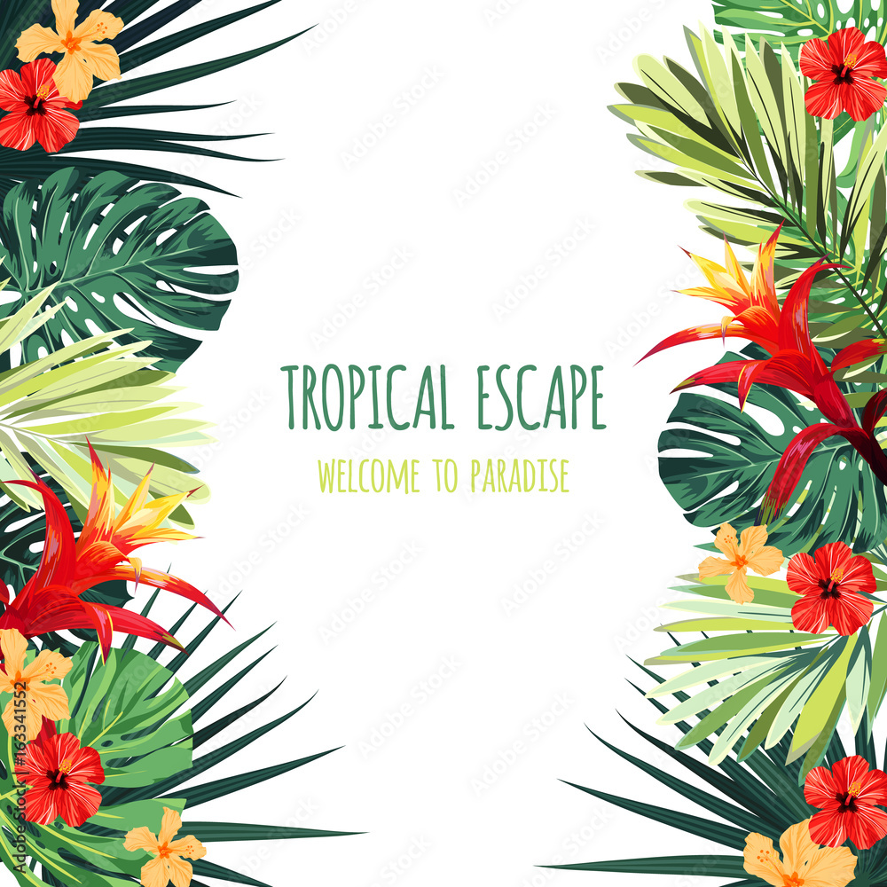Fototapeta Floral square postcard design with guzmania and hibiscus flowers, monstera and royal palm leaves. Exotic hawaiian vector background.