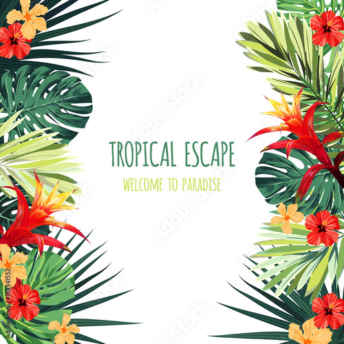 Floral square postcard design with guzmania and hibiscus flowers, monstera and royal palm leaves. Exotic hawaiian vector background.