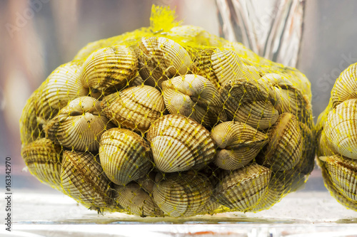 Fotografiet cockles in saltwater for sale , live and  fresh