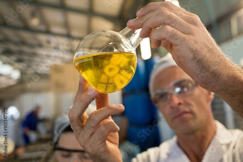 Technician examining olive oil
