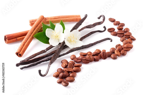 Fototapeta Vanilla sticks and cinnamon with coffee beans and flower isolated on white background obraz