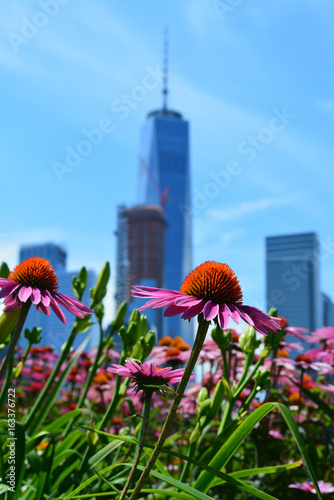 Photo  Flowers in bloom in Lower Manhattan.