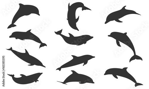 Papel de parede Silhouette dolphin set