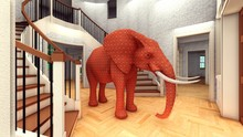 Elephant In The Living Room 3d...