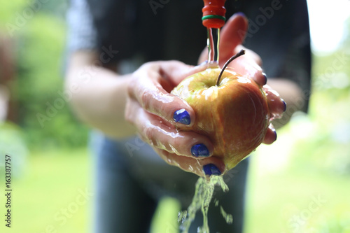 Fototapeta Ekologiczne owoce prosto z drzewa. Kobieta myje jabłko pod bieżącą wodą. obraz