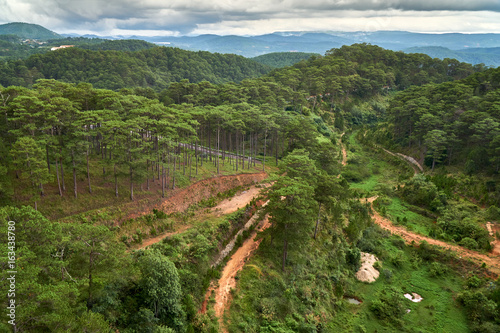 Tuinposter Wijngaard Pine forest - high angle view - from the Dalat Cable Car to the Truc Lam pagoda. Dalat, Vietnam.