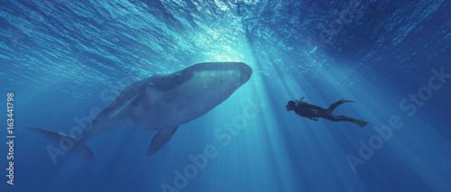 Diver Canvas Print