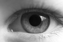Human Eye Close-up In Black And White. Extended Pupil