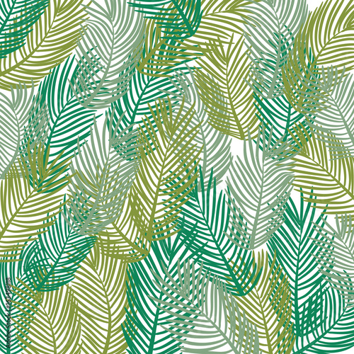 Ingelijste posters Tropische Bladeren Vector pattern. Leaves of a tropical palm tree. Banana leaf background. Exotic design.