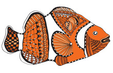 Clownfish Zentangle Stylized, Vector, Illustration, Freehand Pencil, Color. Pattern.