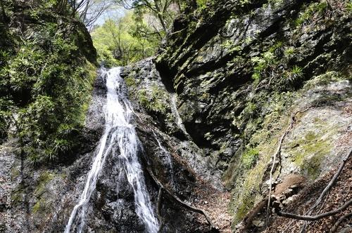 Valokuva  道志村の雌滝