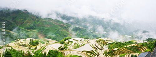 Autocollant pour porte Les champs de riz Panorama of terraced rice field in Longji, Guilin area, China
