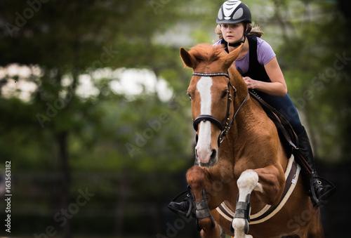 Fototapeta Young pretty girl riding a horse obraz