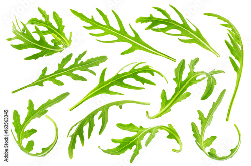 Rucola or arugula leaves isolated on white background Wallpaper Mural