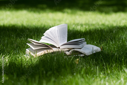 open books on grass in a green park Canvas Print