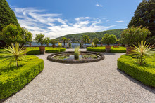 Jardins Et Palmier