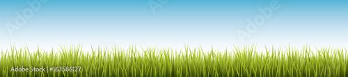 Świeża realistyczna zielona trawa - wektorowa ilustracja