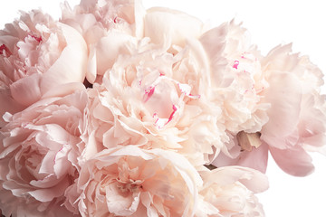 Panel Szklany Peonie Bouquet of beautiful peony flowers on light background, closeup