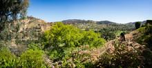 Calabasas, California Panorama...