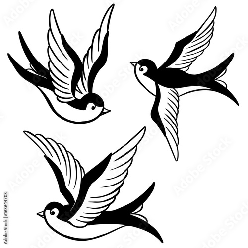 Photo  set of the swallow icons