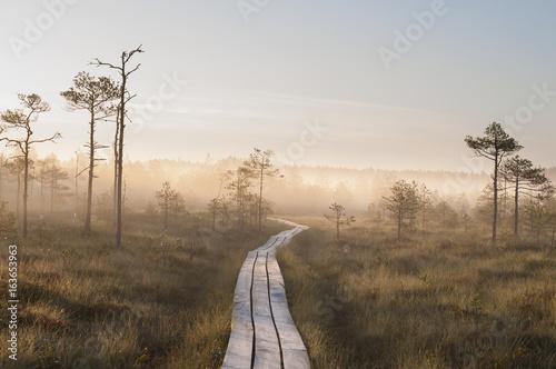 Fotografia Sunrise Bog & Fog (Hiking)