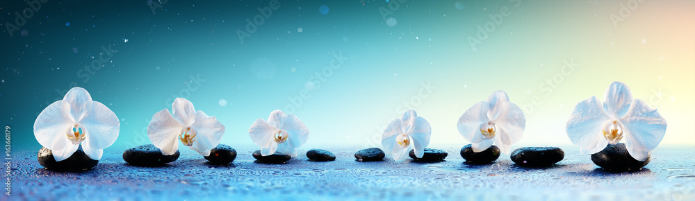 Fototapety, obrazy: Orchids In Row On Spa Stones In Fresh Background