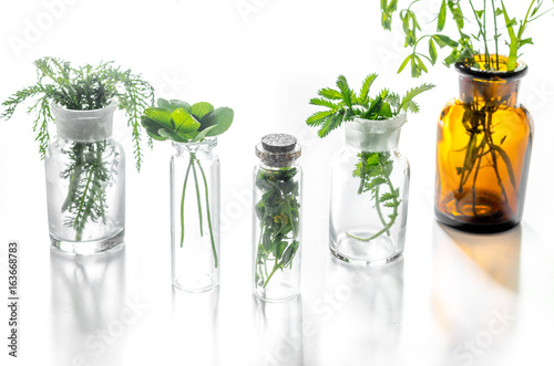 Photo  Homeopathy. Medicinal herbs in glass on white background