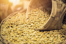 Unroasted Coffee Beans Or White Green Coffee Bean Beautiful Decoration.