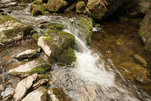 Fototapeten Forest river waterfall