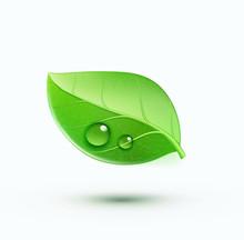 Green Environment Concept Icon
