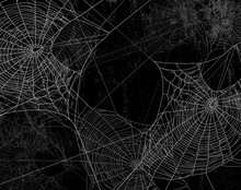 Spider Web Silhouette Against ...