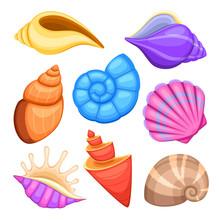 Ocean Cockleshells. Cartoon Se...